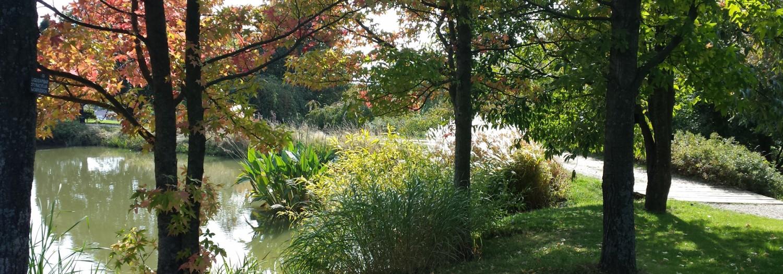 L 39 crin de vert le jardin du bois marquis vernioz for Le jardin du pic vert